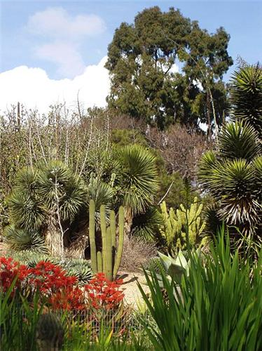 Irvine Nature